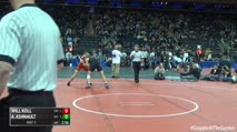 141 Finals - Will Koll, Cornell vs Anthony Ashnault, Rutgers