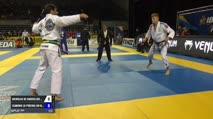 Nicholas Meregali vs Leandro Lo IBJJF 2017 Pan Jiu-Jitsu Championship