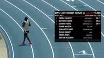 Boy's 110m Hurdles 4A, Final