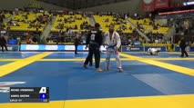 Michael Stromsness vs Gabriel Giustina IBJJF 2017 World Championships