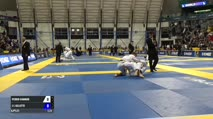 Pedro Hannud vs J L Gillette IBJJF 2017 World Championships