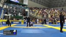 Roberto Torralba vs Rodrigo Ribeiro IBJJF 2017 World Championships