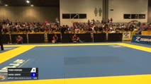 Pedro Henrique vs Rafael Lovato Jr. World Master Jiu-Jitsu IBJJF Championship
